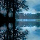 Reflections of Winter by Varinia   - Globalphotos
