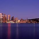 Sydney Reflections by Matt  Lauder