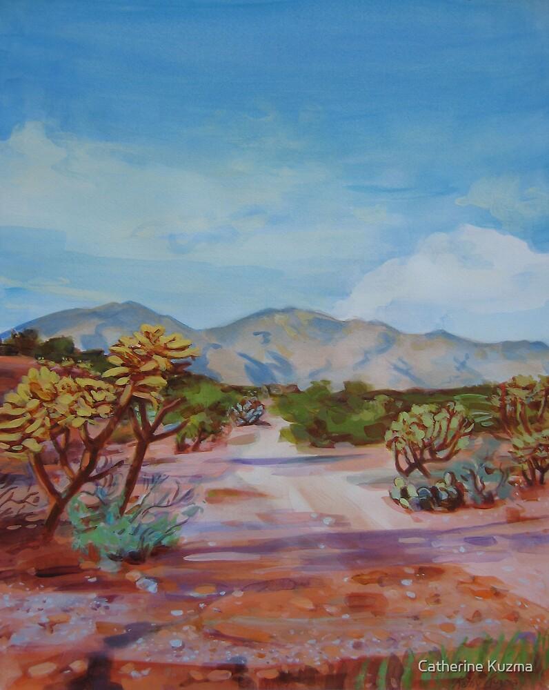 Desert Path by Catherine Kuzma