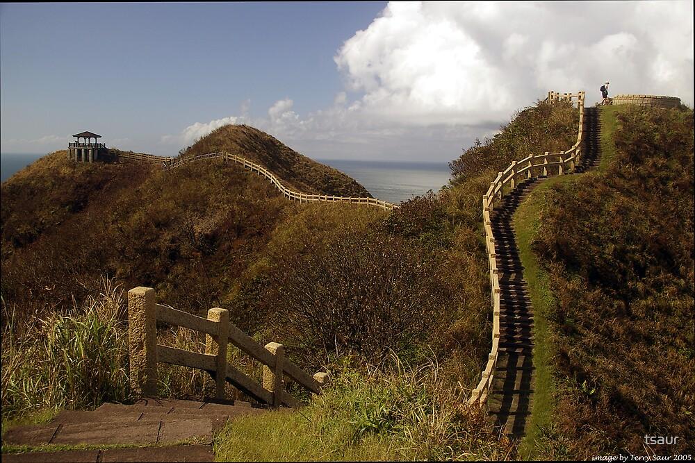 The Great Fence Of Taiwan (Taiwan 2005) by tsaur