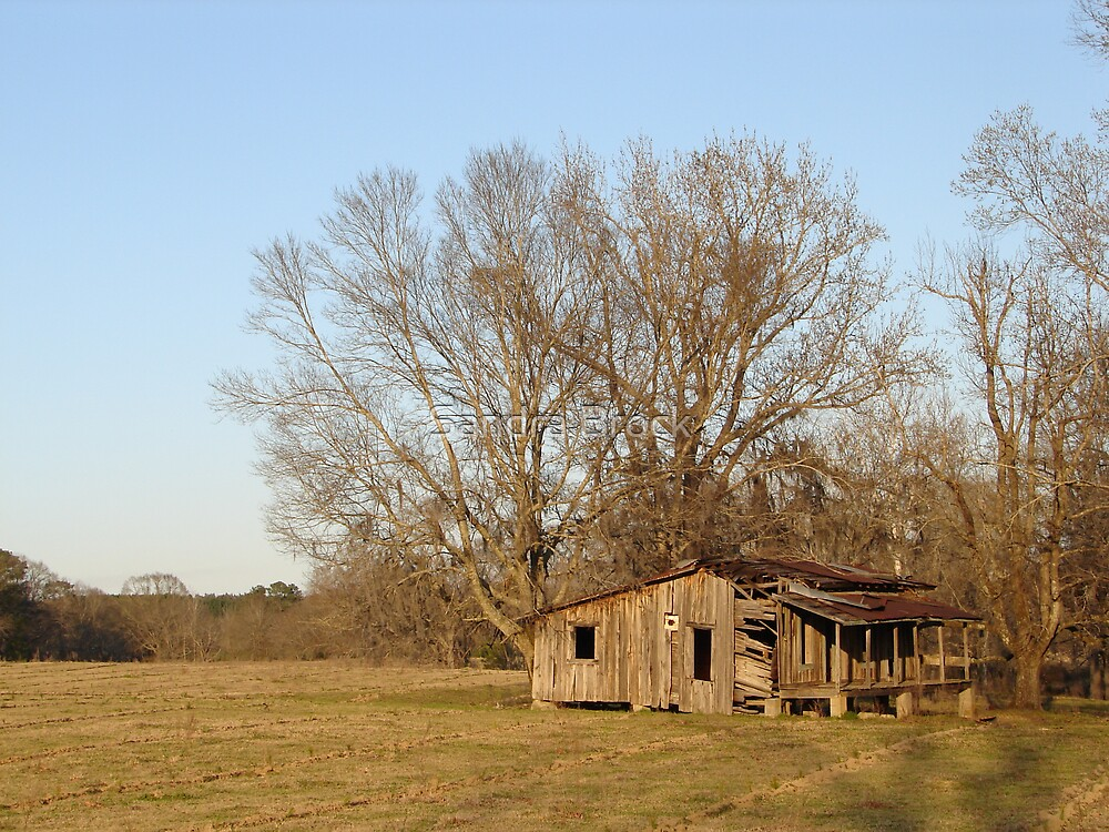 Abandoned by Sandra Brock