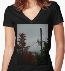 A Pretty Picture of Death Women's Fitted V-Neck T-Shirt