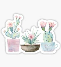 Watercolor cactus succulents Sticker