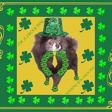 Irish Pomeranian Dad by kabsannie