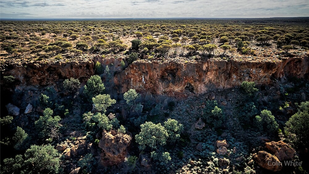 The terraces - Leonora Loop (photo Dave Carter) by Colin White