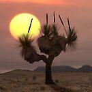 The Grass Tree by Hans Kawitzki