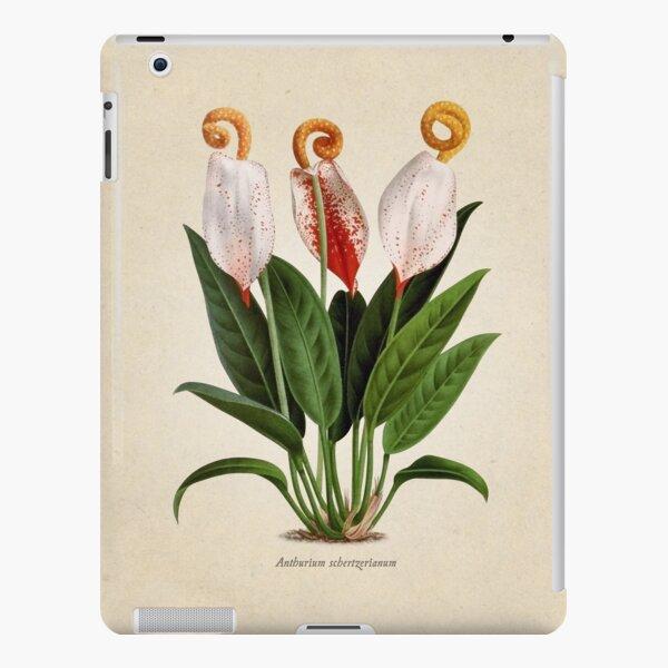 Anthurium scherzerianum old plate Funda rígida para iPad