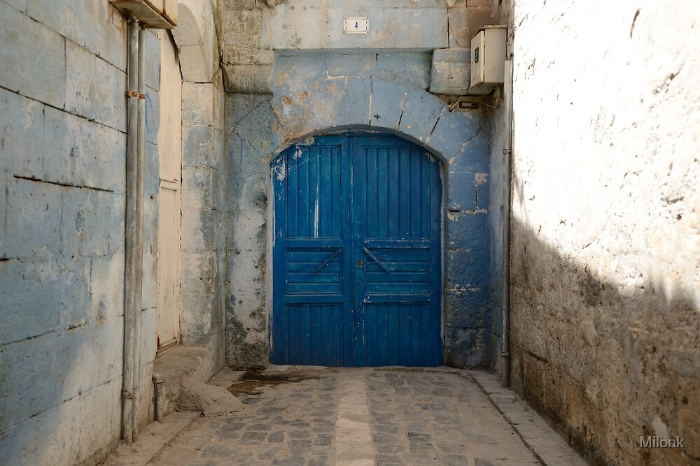 Blue door by Milonk