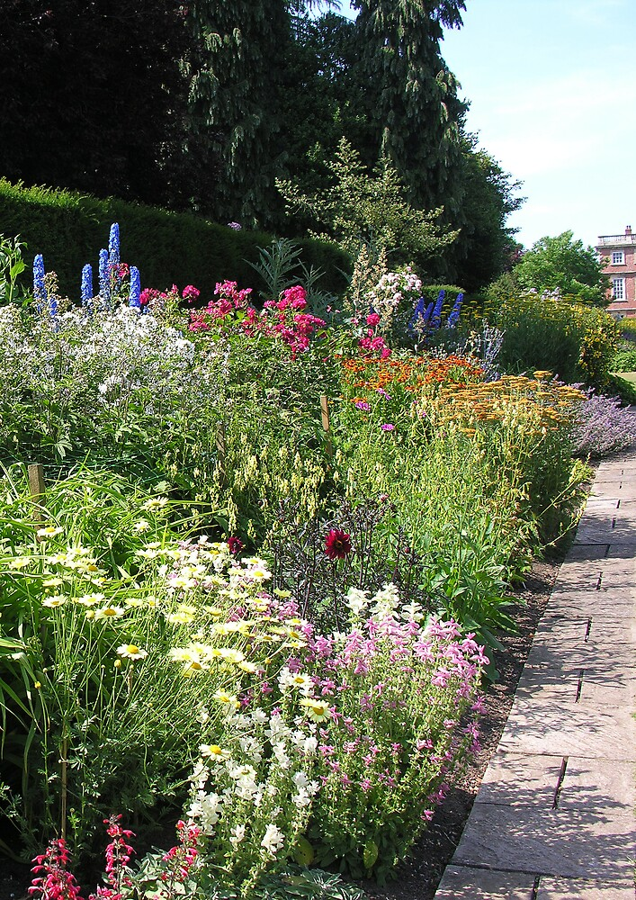 The Herbaceous Border by Angela Harburn