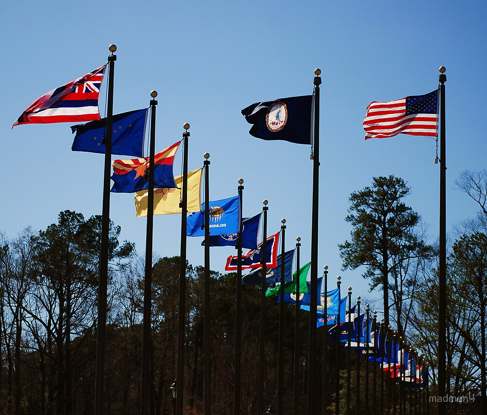 Flags In The Breeze by madman4