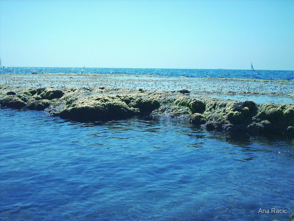 Mediterranean Sea by Ana Racic