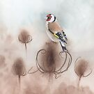 Goldfinch on Teasel Seed Heads by Ray Shuell