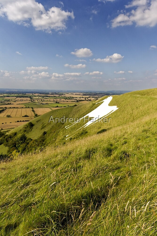 The Westbury White Horse, Wiltshire, UK by Andrew Harker