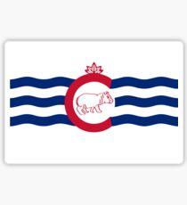 Cincinnati Flag with Fiona Sticker