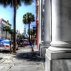 Street in Charleston by TJ Baccari Photography