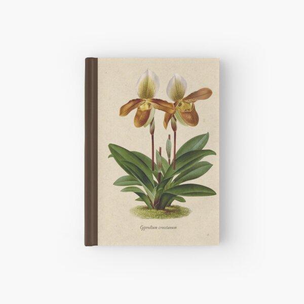 Cyripedium crossianum old plate Cuaderno de tapa dura