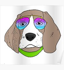 Dog With Sunglasses Poster
