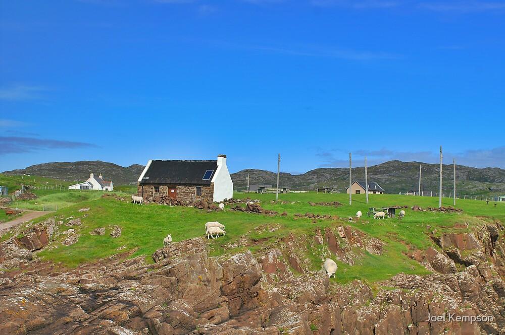 Scotland - House With Sheep by Joel Kempson