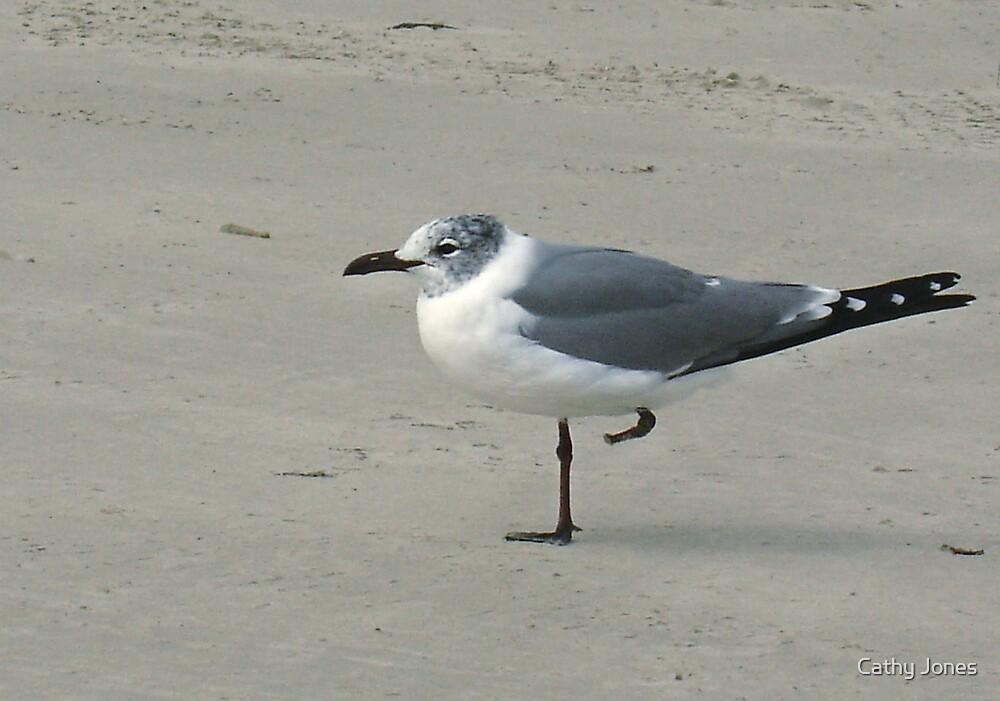 One legged bird by Cathy Jones