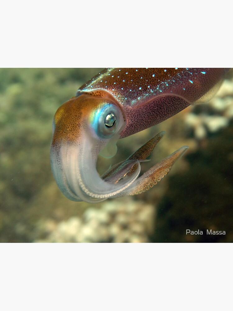 45 min.with squidd by massapa