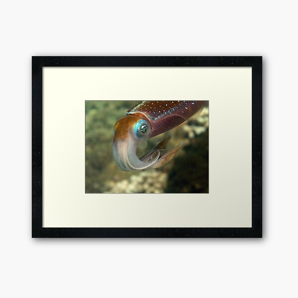 45 min.with squidd Framed Art Print