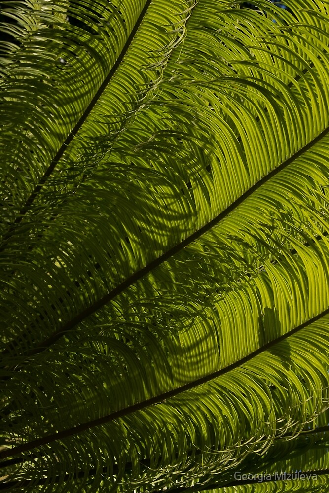 Tropical Green Curves and Diagonals - a Vertical View by Georgia Mizuleva