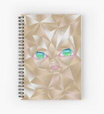 Crumpled Spiral Notebook