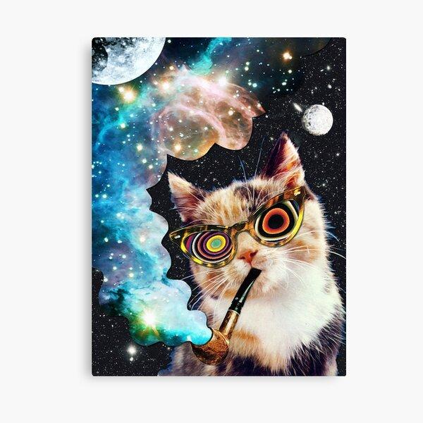 Dollar Bill Feline Collectible FAKE 1 MONEY-V1 Tabby Cat  Kittens