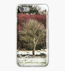 Purple trees in the snow iPhone Case/Skin