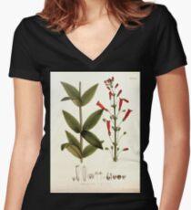 Nova genera et species plantarum V1 V3 Plates Karl Friedrich Philipp von Martius 1834 218 Women's Fitted V-Neck T-Shirt