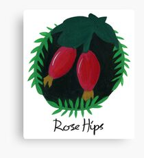 Rose Hips Botanical Painting Canvas Print