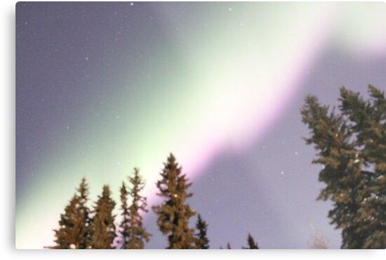 Aurora Borealis Alaska 9 by roguefaerie
