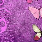 Violet Butterflies Songs by Delights