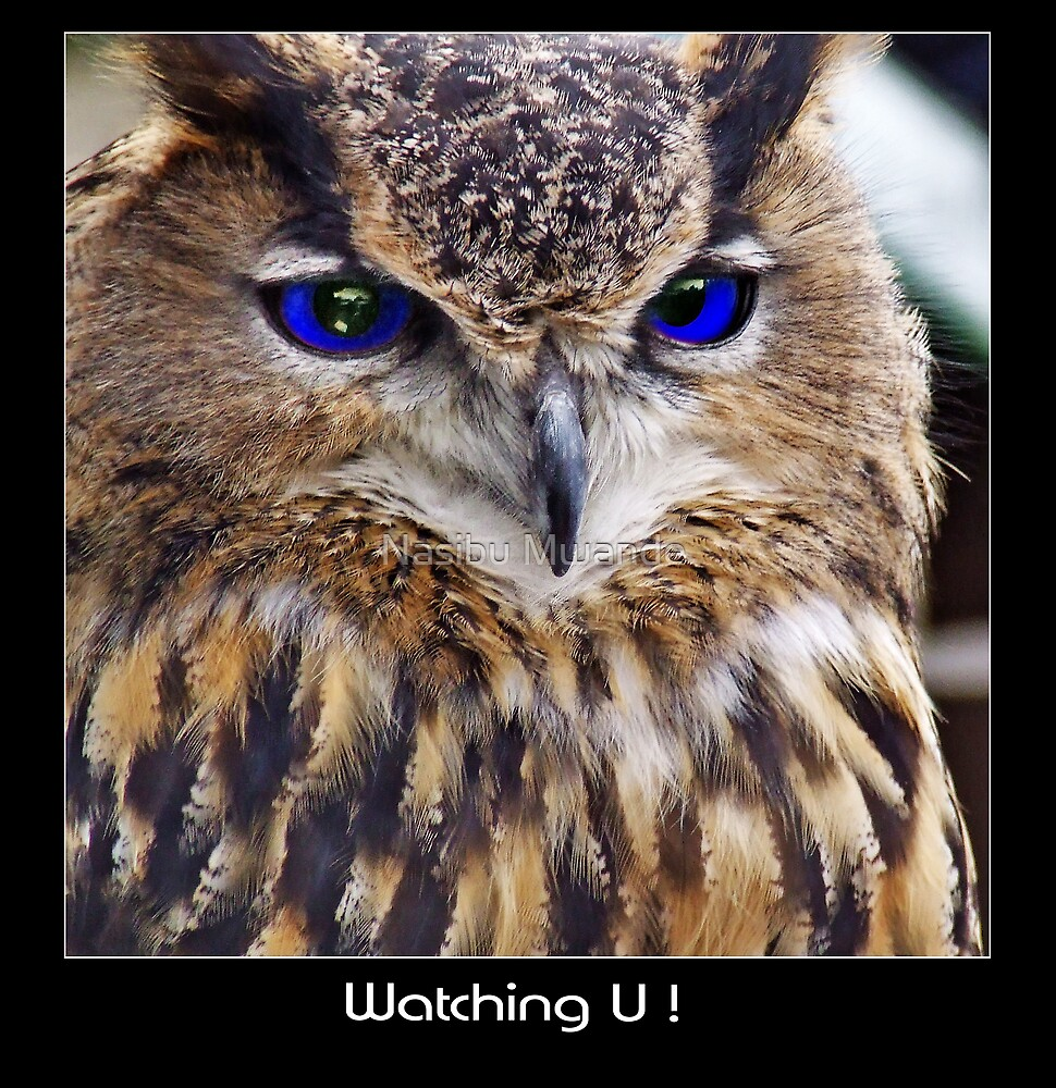 All Eyes On You! by Nasibu Mwande