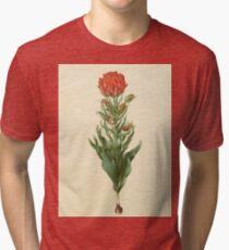 Holtzbecker's Gottorfer Codex Tulip Tri-blend T-Shirt