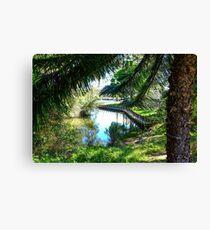 Forster Lake Canvas Print