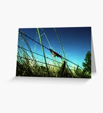 Fence 1 Greeting Card