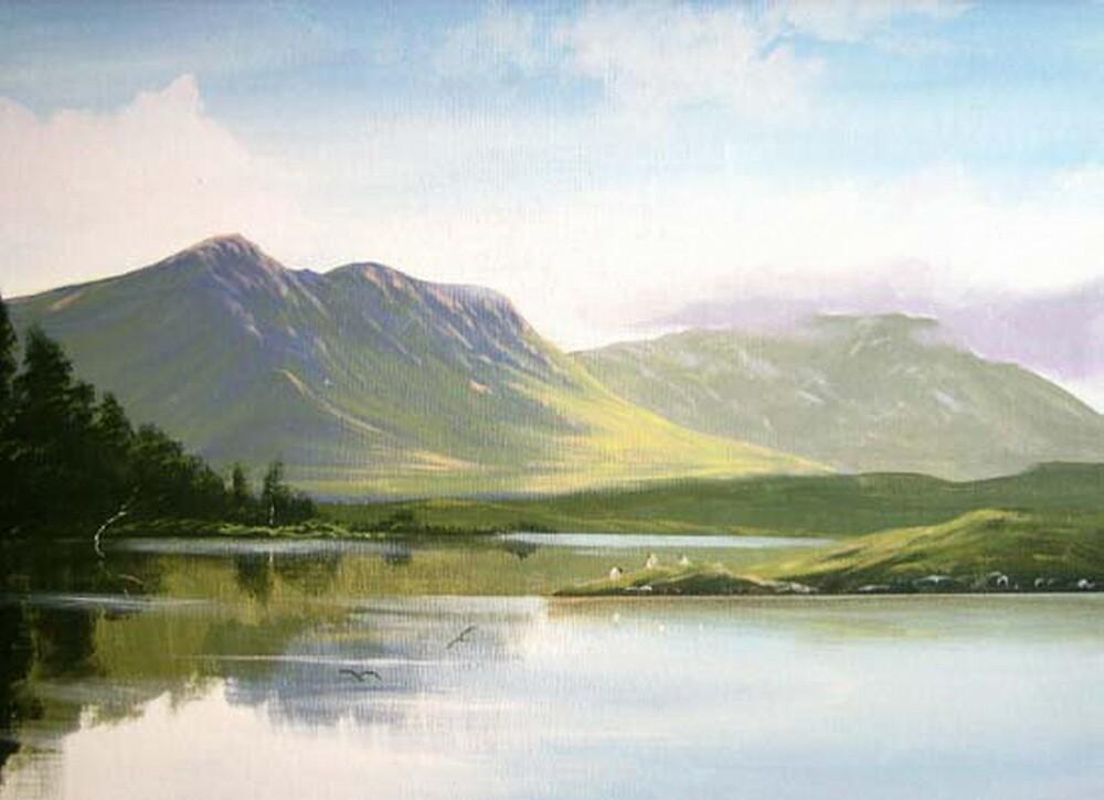 ballinahinch lake by cathal  o malley