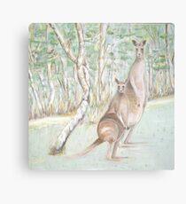 Australian Kangaroos Metal Print