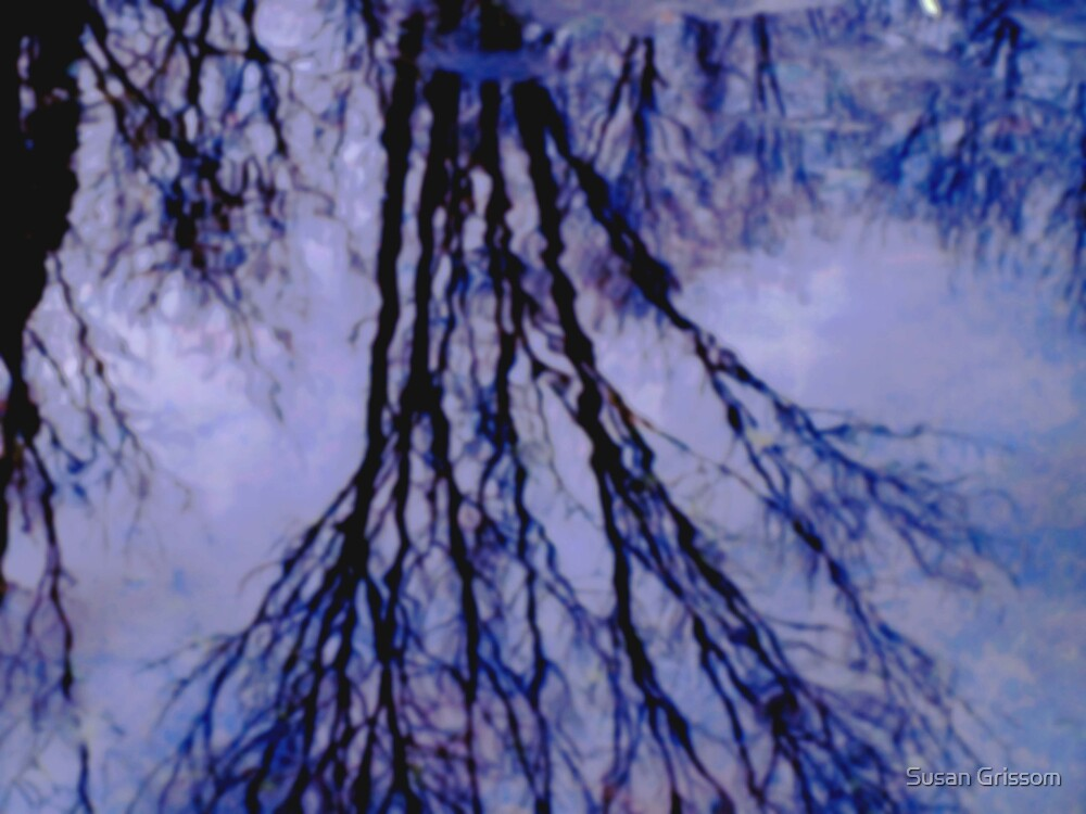 Reflections in Icy Pond by Susan Grissom