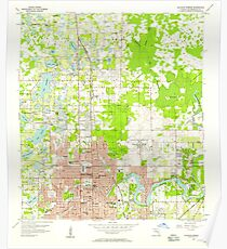 USGS TOPO Map Florida FL Sulphur Springs 348727 1956 24000 Poster