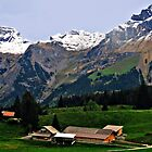 Beautiful Switzerland 2 by Margaret Stevens