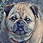Unconditional Love of a Pug by Extremz