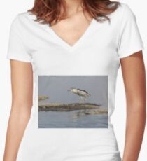 Black-crowned Night Heron 2017-2 Women's Fitted V-Neck T-Shirt