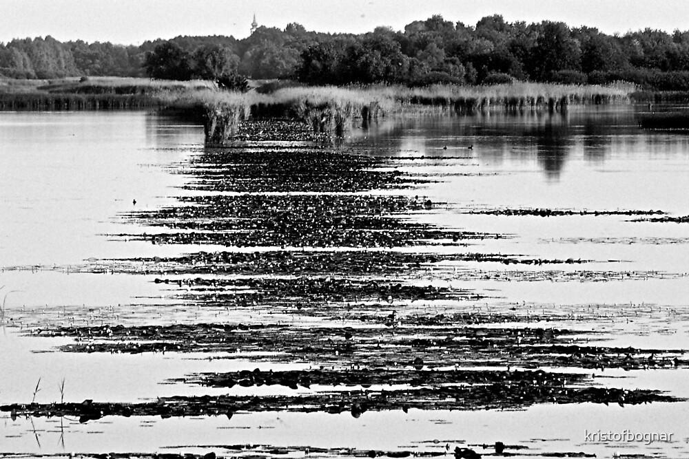 Rythm on the lake by kristofbognar