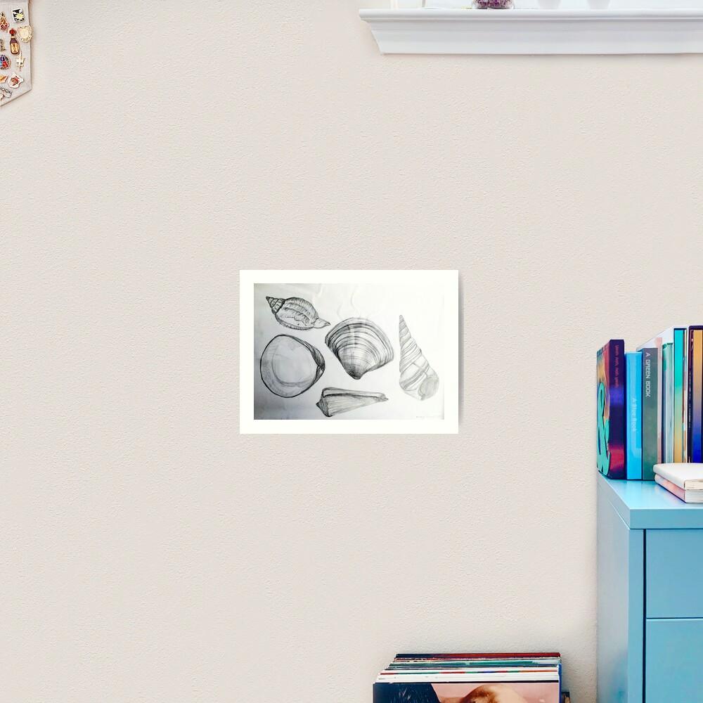 Sea Shells 4 by Margo Humphries Art Print