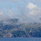 Annäherung an Santa Catalina Island von Celeste Mookherjee