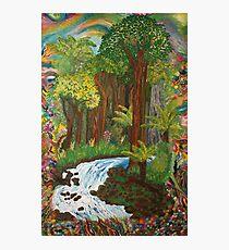 Rainforest - vivid Photographic Print