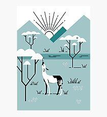 Okapi Landscape Photographic Print