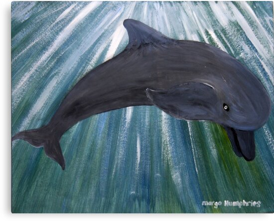 Dolphin by Margo Humphries